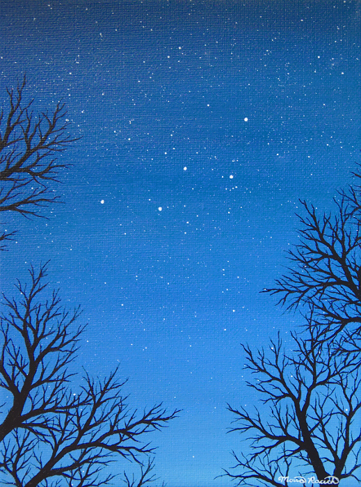 Painting of the constellation Cassiopeia between tree branches