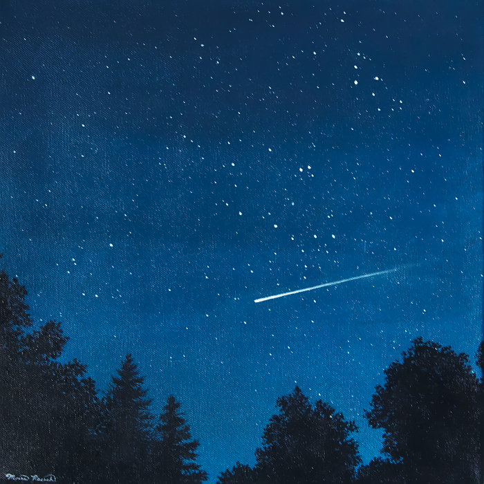 Painting of a meteor over trees